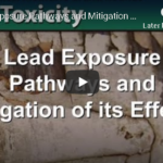 CDC – Lead Exposure Pathways and Mitigation of its Effects (video)